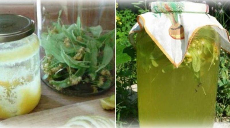 Лимонад з цвіту липи — добре втамовує спрагу, та корисний для здоров'я