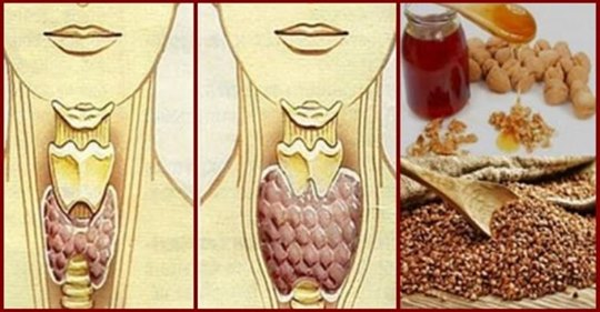Змішайте по одній склянці гречаної крупи, волоських горіхів і меду!