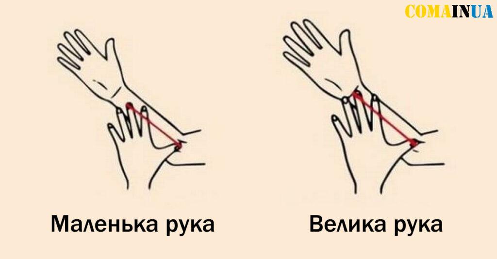 Розмір вашої руки розповість дещо цікаве про ваш характер